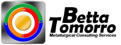 Betta Tomorro Professional Logo Design