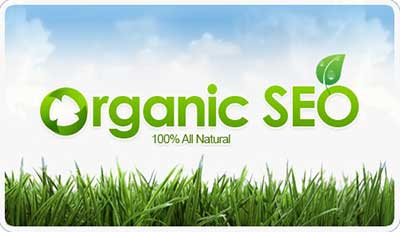natural organic seo services