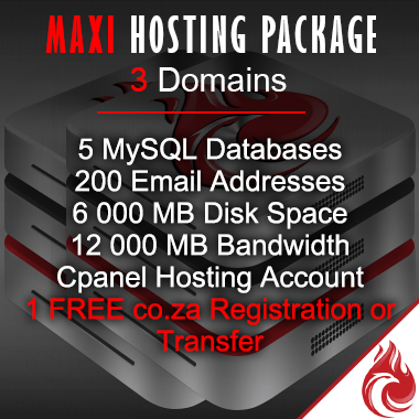 Maxi Business Website Hosting Package