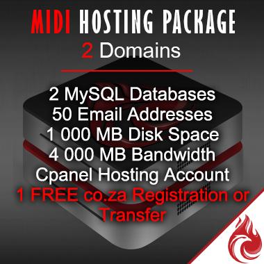 Midi Business Website Hosting Package
