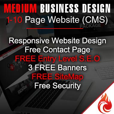 Medium Website Design Package