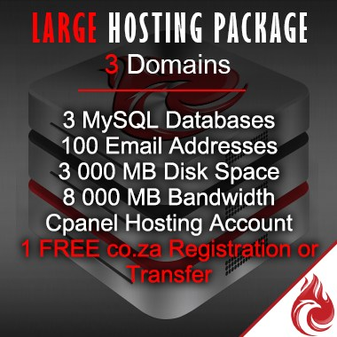 Large-business-hosting7