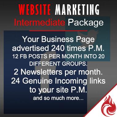 Website Marketing -  Intermediate