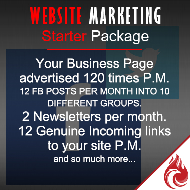 Website Marketing -  Starter